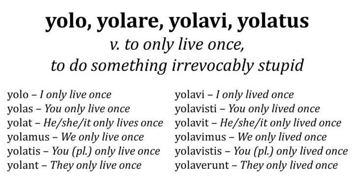 yolo conjugation